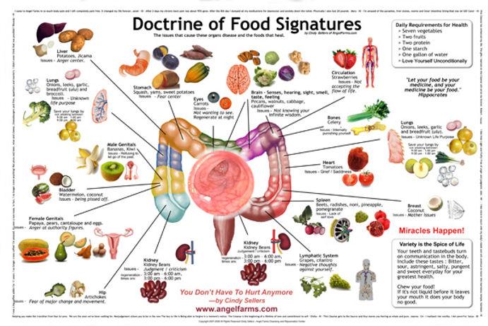 Doctrine-of-Food-Signatures_11x17OPT.jpg