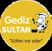 gediz sultan logo.png