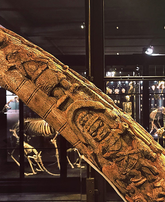 The Picture shows an elephant tusk carved with human figures from the kingdom of Benin. The object introduces the things that didn't teach us section, click on the link to find out more