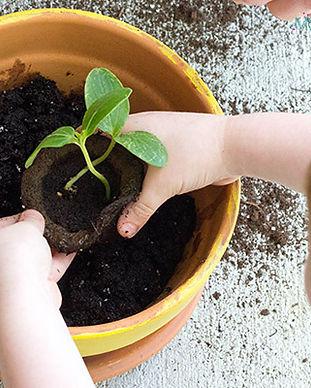 Kid-Made-Painted-Planter-Flower-Pot-3.jp