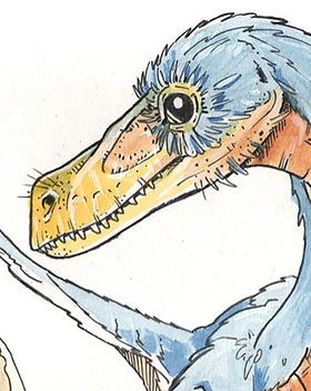 bambiraptor.jpg