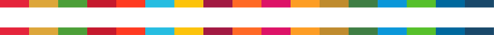 SDGBannerColours.png