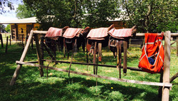 Blazing Saddles!