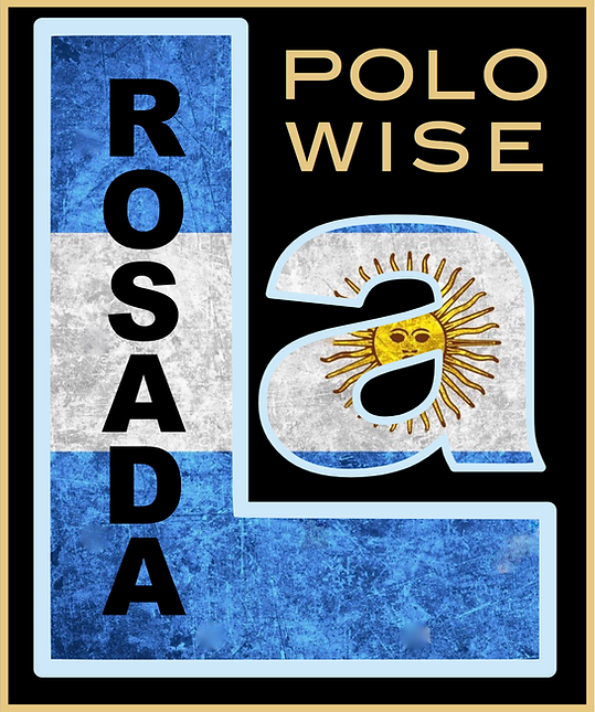 POLO WISE.png