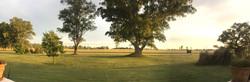 Sunrise over the polo ground