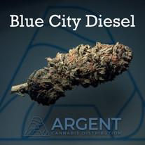 Insta blue city diesel.jpg