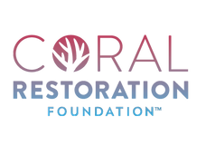 gradient logo transparent background CRF