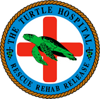 The Turtle Hospital Logo.png