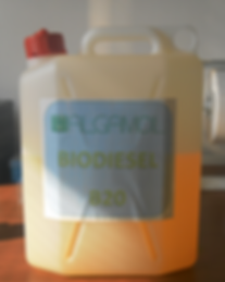 biodiesel B20 Tere Group