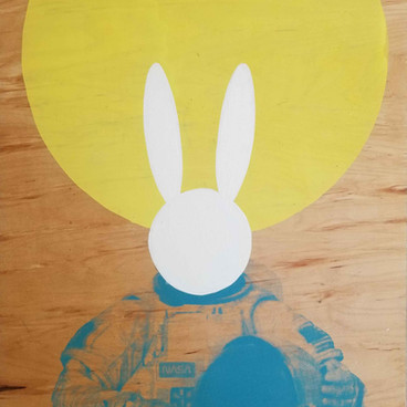 Mr. Bunny goes to space