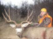Page Johns Mule Deer Buck
