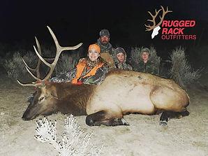 Bull Hunt.jpg
