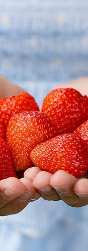 Foodfotografie-Erdbeerzeit