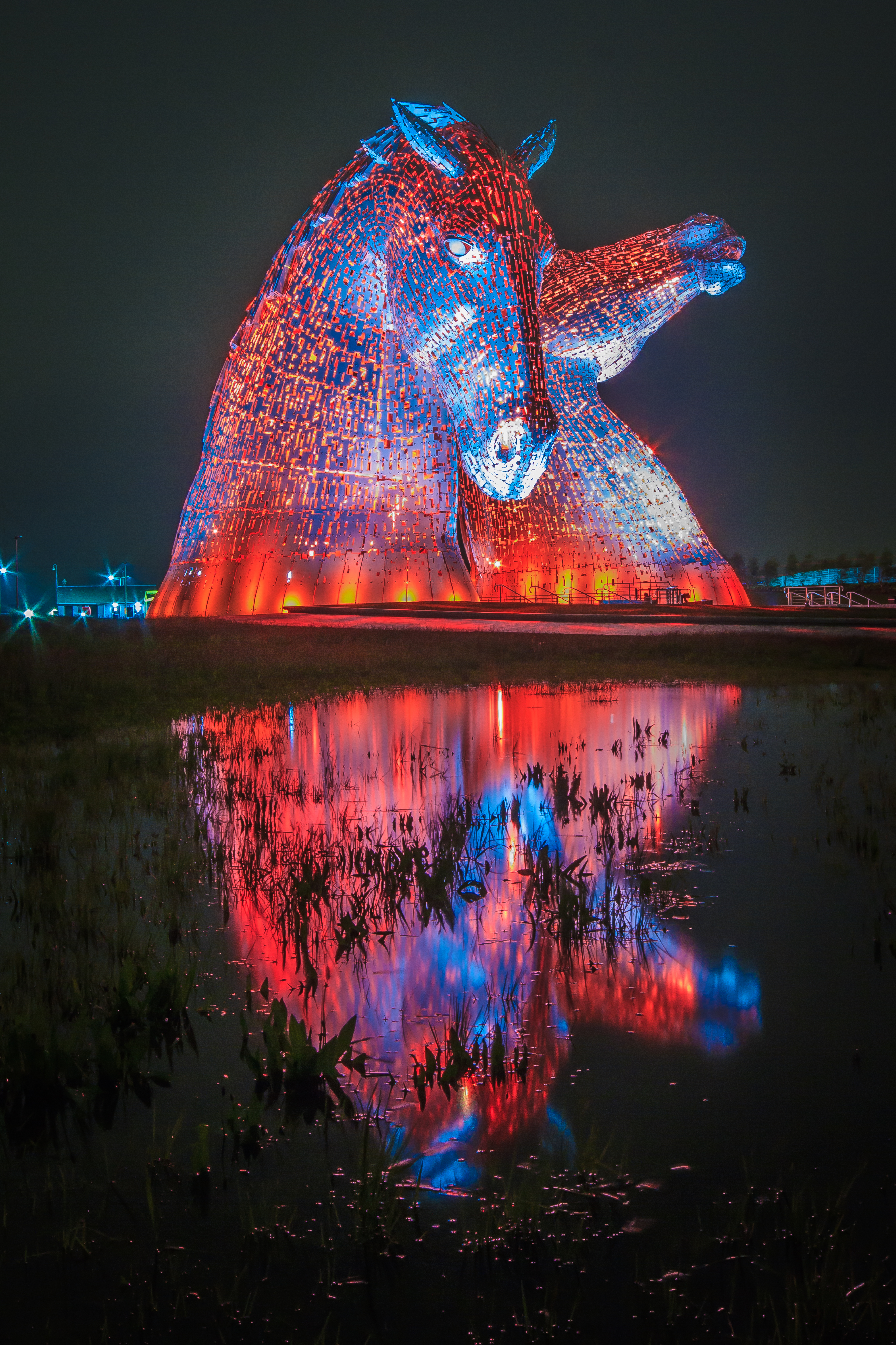 Red and Blue Kelpies  K5