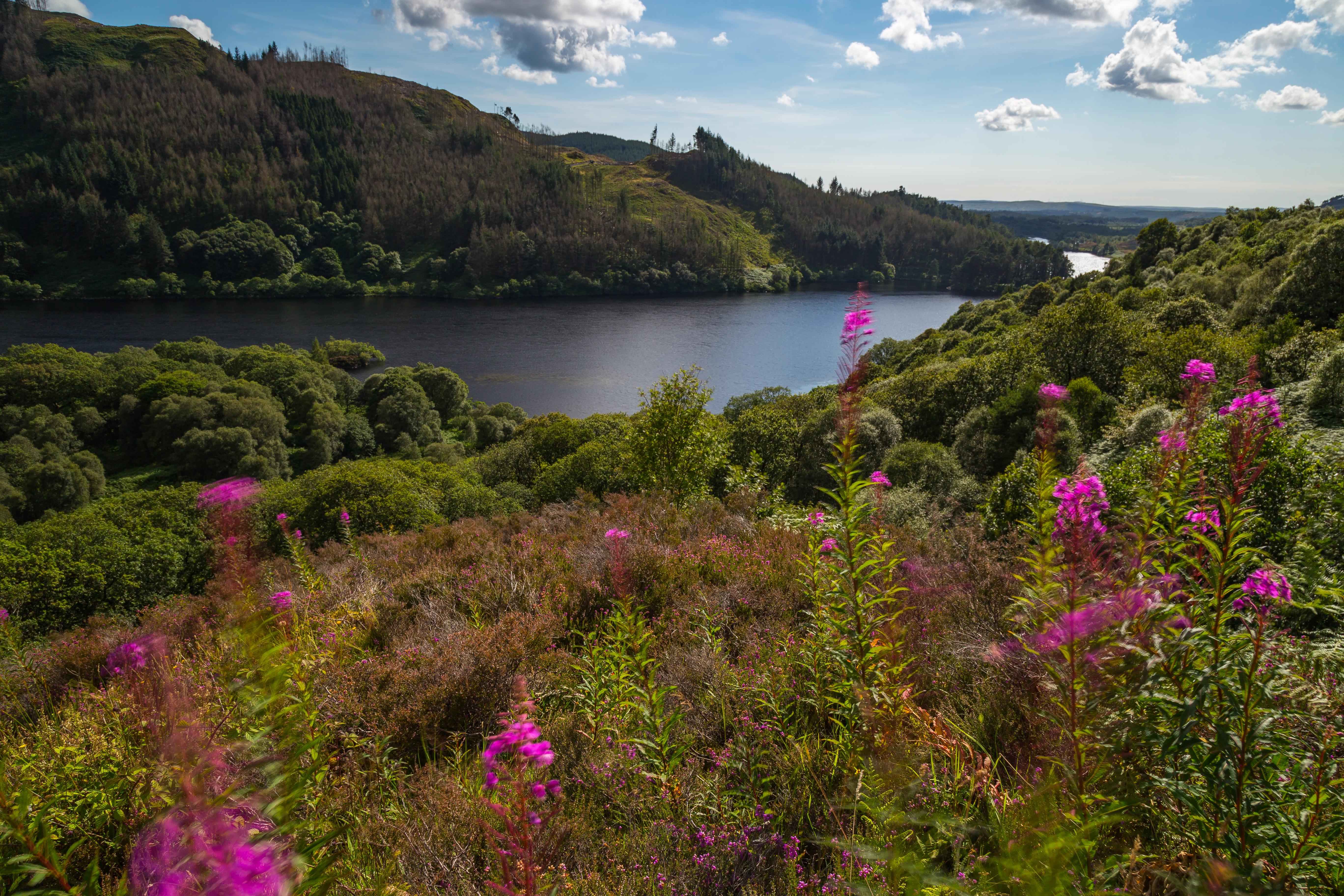 Loch Trool L135
