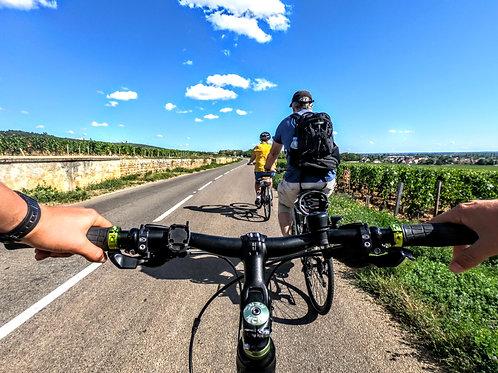 Excursion à vélo & Dégustation - demi-journée