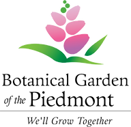 BGP_logo1_edited.png