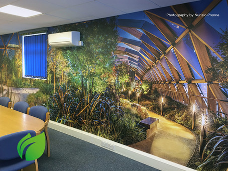 Environmentally-Friendly & Sustainable One-Piece Wallcoverings