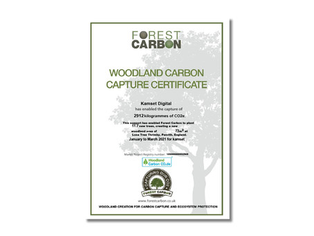 Kicking off 2021 with 73 square metres of new UK woodland