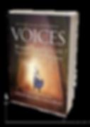 Voices image slant.png