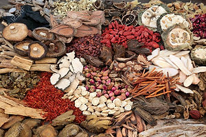 89400977-traditional-chinese-herbs-used-