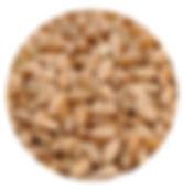 cereal de calidad