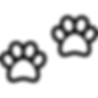 hair, makeup, spray tan, salon, hair salon, beauty, hoboken, nj, nyc, airbrush makeup, photoshoot, best spray tan, infinity sun, best makeup, best hair, blowout, curls, updo, updos, wedding, bride, best salon hoboken, best of the knot, dog friendly, dog friendly salon