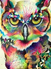 Oliver 56 x 36 cm Mix media on Cotton Paper Quito. Ecuador