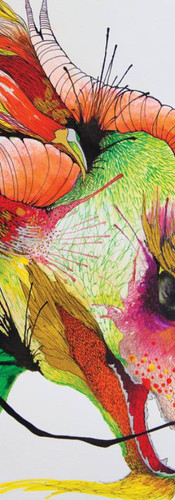Rocking Mango Picante / Kacau Chocolates Mixed Media on Cotton Paper 36 x 56 cm Quito. Ecuador 2014