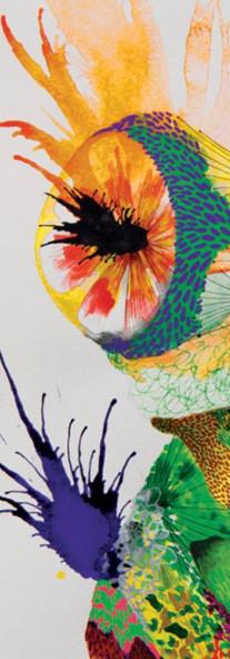 Acid Frog / Kacau Chocolates Mixed Media on Cotton Paper 36 x 56 cm Quito. Ecuador 2014