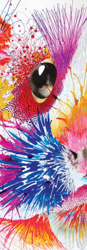 Uvilla Cuy / Kacau Chocolates Mixed Media on Cotton Paper 36 x 56 cm Quito. Ecuador 2014