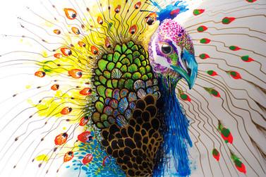 Plebeian Master 56 x 36 cm Mix media on Cotton Paper Quito. Ecuador