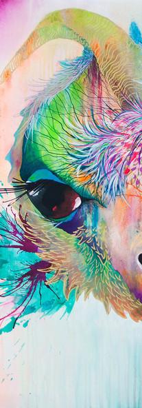 Vladimir Seco de Chivo 120 x 180 cm Mixed Media on Canvas Guayaquil / Ecuador 2016