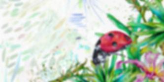 franja-mariquita.jpg