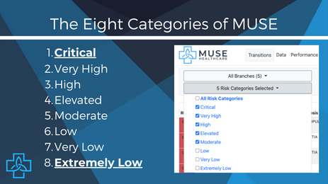 Exploring the Eight Categories of MUSE