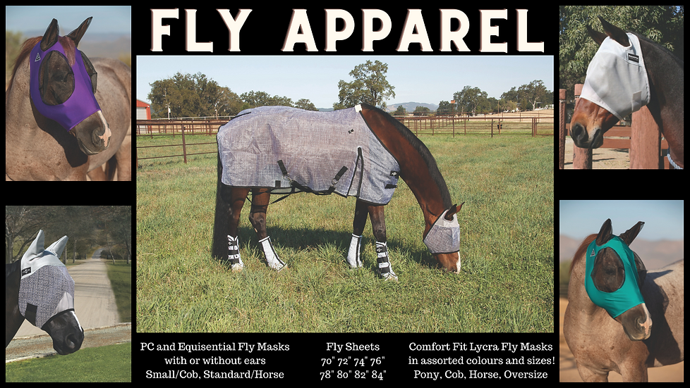Fly Apparel.png