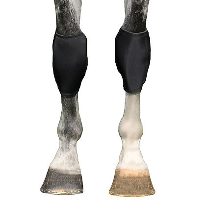 BOT Knee Boots.jpg
