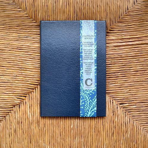 Clotilde Notebooks