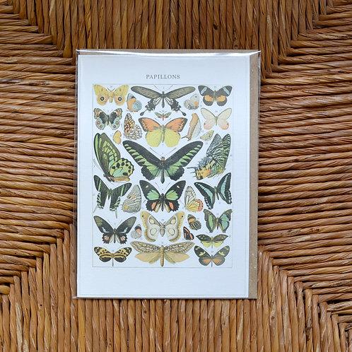 Papilions card