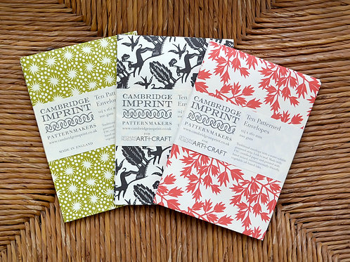 Cambridge Imprint pattern envelope pack