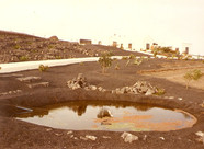 Teich Juli 1984.jpg