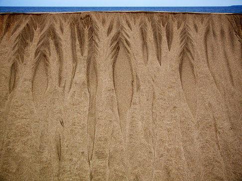 Spuren im Sand 3.jpg