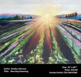 Johnson.Sandra - New Day Dawning. - Copy