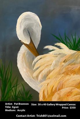 Brannon Pat - Egret .jpg