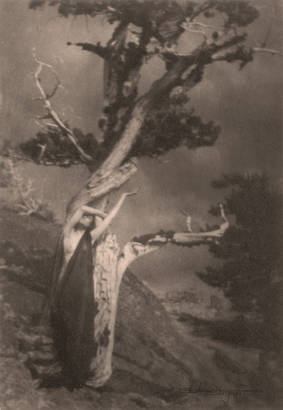 Waterfall Maiden