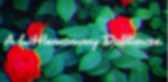 IMG_6755a_edited.jpg