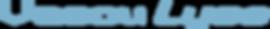logo-vasculyse.png