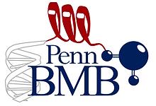 PennBMB_GradGroup.png