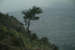 türkmenler-eray'ca (135)