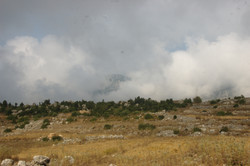 türkmenler-eray'ca (571)